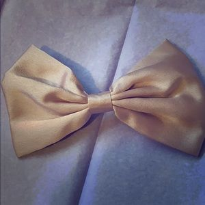 Satin hair bow with clip